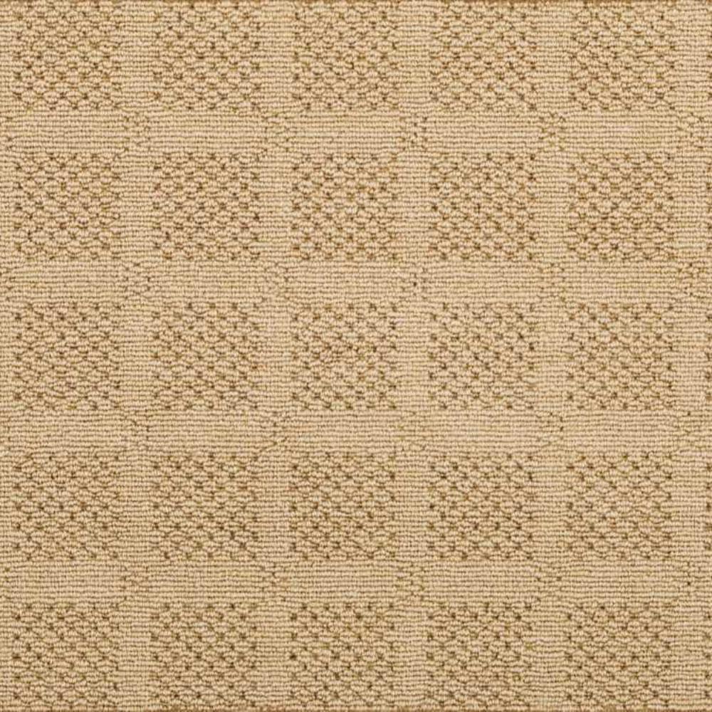 Carpet Sample - Desert Springs - Color Sand Loop 8 in. x 8 in.