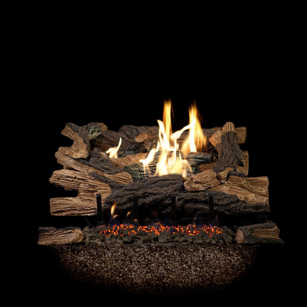 Emberglow 24 In Georgia Regal Vent Free With Embers Natural Gas Fireplace Logs Remote Ready