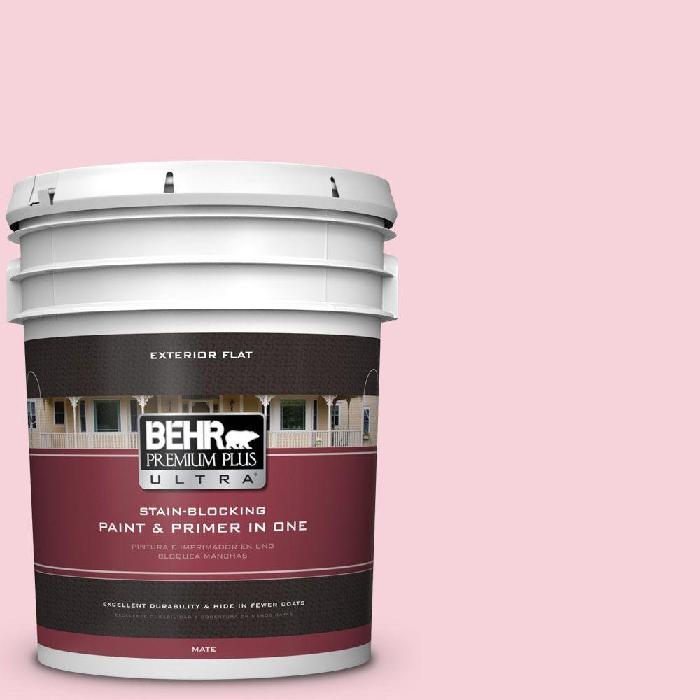 5-gal. #110C-1 Petal Bloom Flat Exterior Paint