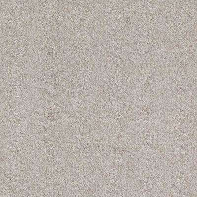 Carpet Sample - Playful Moments II Tonal - Color Flagship Texture 8 in. x 8 in.