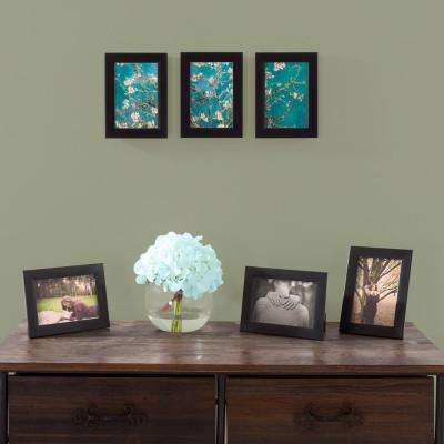 4 in. x 6 in. Black Picture Frame (6-Pack)