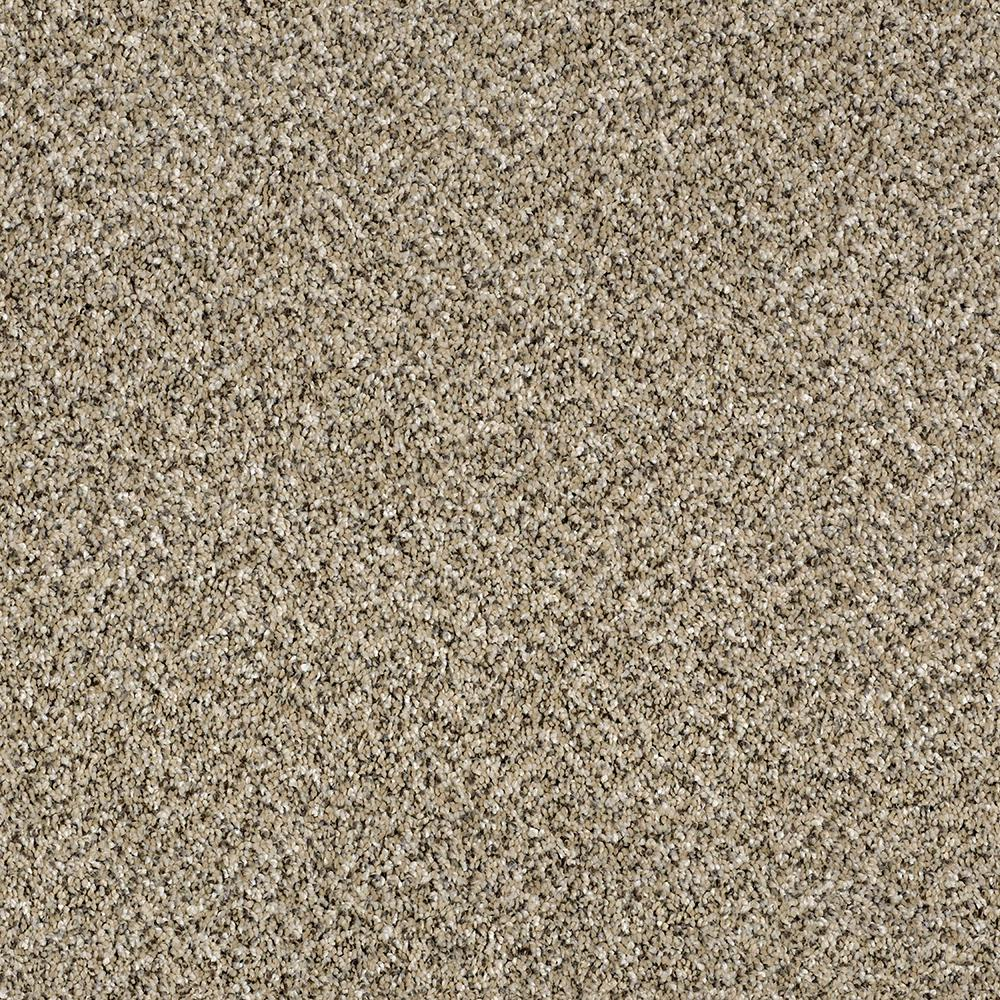 Home Decorators Collection Carpet Sample Wholehearted Ii