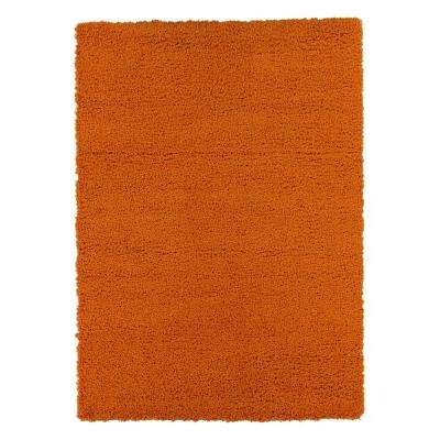 Contemporary Solid Orange 5 ft. x 7 ft. Shag Area Rug