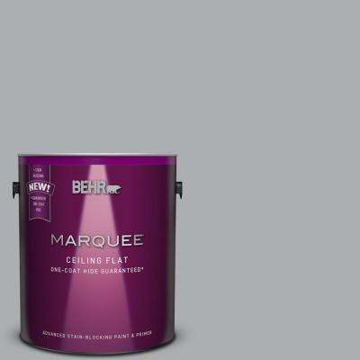 1 gal. #N500-3 Tinted to Tin Foil One-Coat Hide Flat Interior Ceiling Paint and Primer in One