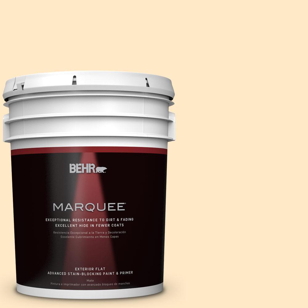 BEHR MARQUEE 5-gal. #P250-1 Papaya Sorbet Flat Exterior Paint