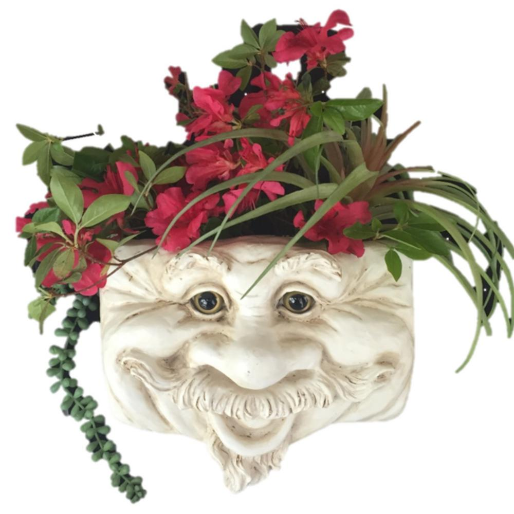 Uncle Nate 10.5 in. Antique White the Muggly Face Statue Tree and Resin Patio Wall Planter