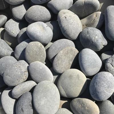 10 cu. ft. 2 in. - 3 in. Pallet Black Mexican Beach Unpolished Pebble