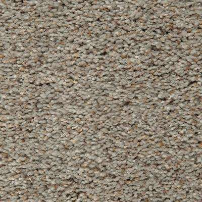 Carpet Sample - Riley I - Color Singsong Textured 8 in. x 8 in.