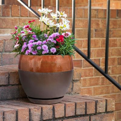 Kendall 7.87 in. x 7.09 in. Copper Ceramic Egg Planter (2-Pack)