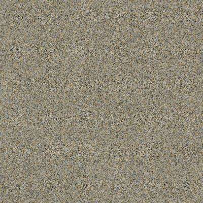 Carpet Sample - Bonanza I - Color Dockside Twist 8 in. x 8 in.
