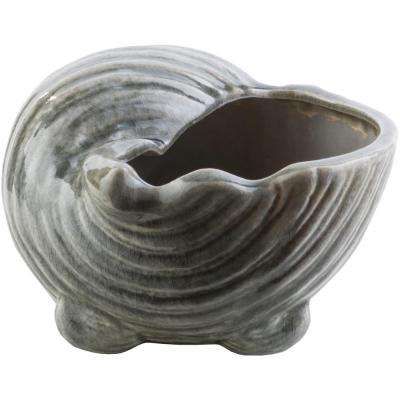 Raynas 9.25 in. x 5.71 in. Decorative Shell Sculpture in Charcoal