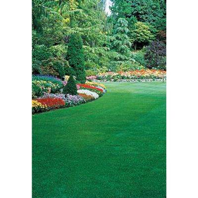 6 lbs. Healthy Lawn Grass Seed, Tall Fescue Variety
