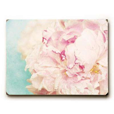 "9 in. x 12 in. ""Delicate Peony"" by OBC Solid Wood Wall Art"