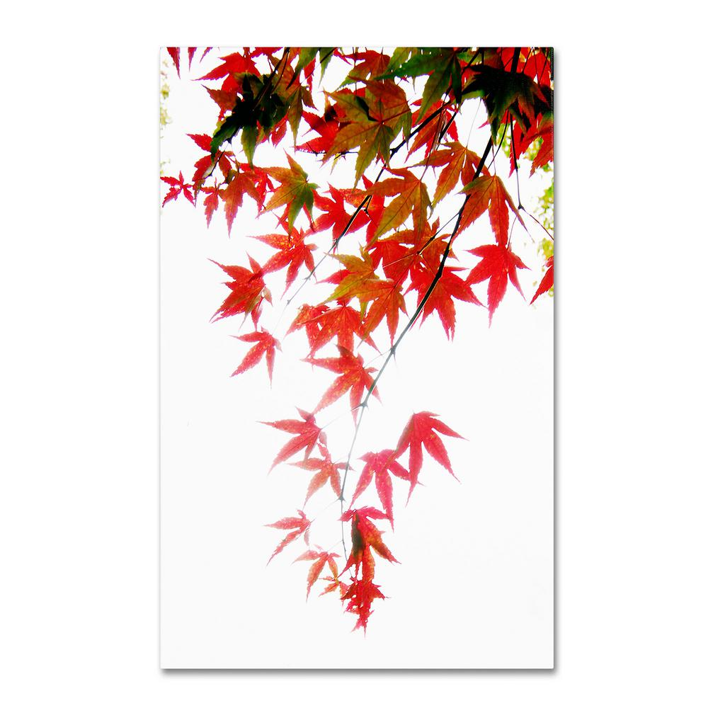 Trademark Fine Art 14 in. x 20 in. Japanese Maple Leaves Canvas Art