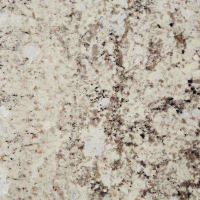 3 in. x 3 in. Granite Countertop Sample in Eagle White