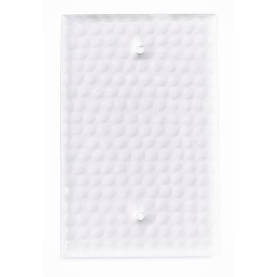 White 1-Gang Blank Plate Wall Plate (1-Pack)