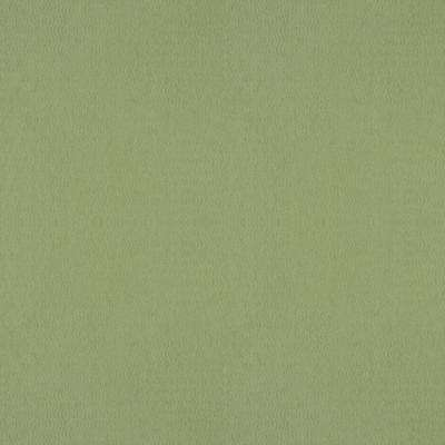 5 ft. x 12 ft. Laminate Sheet in Sprout with Standard Matte Finish