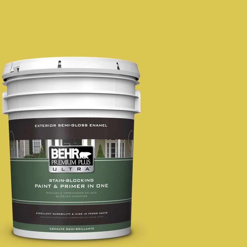 5 gal. #HDC-SM16-10 Pepperoncini Semi-Gloss Enamel Exterior Paint