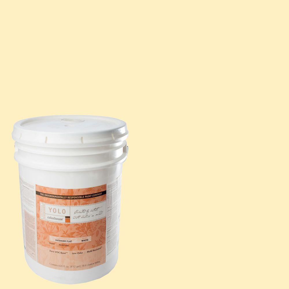 YOLO Colorhouse 5-gal. Grain .01 Flat Interior Paint-DISCONTINUED