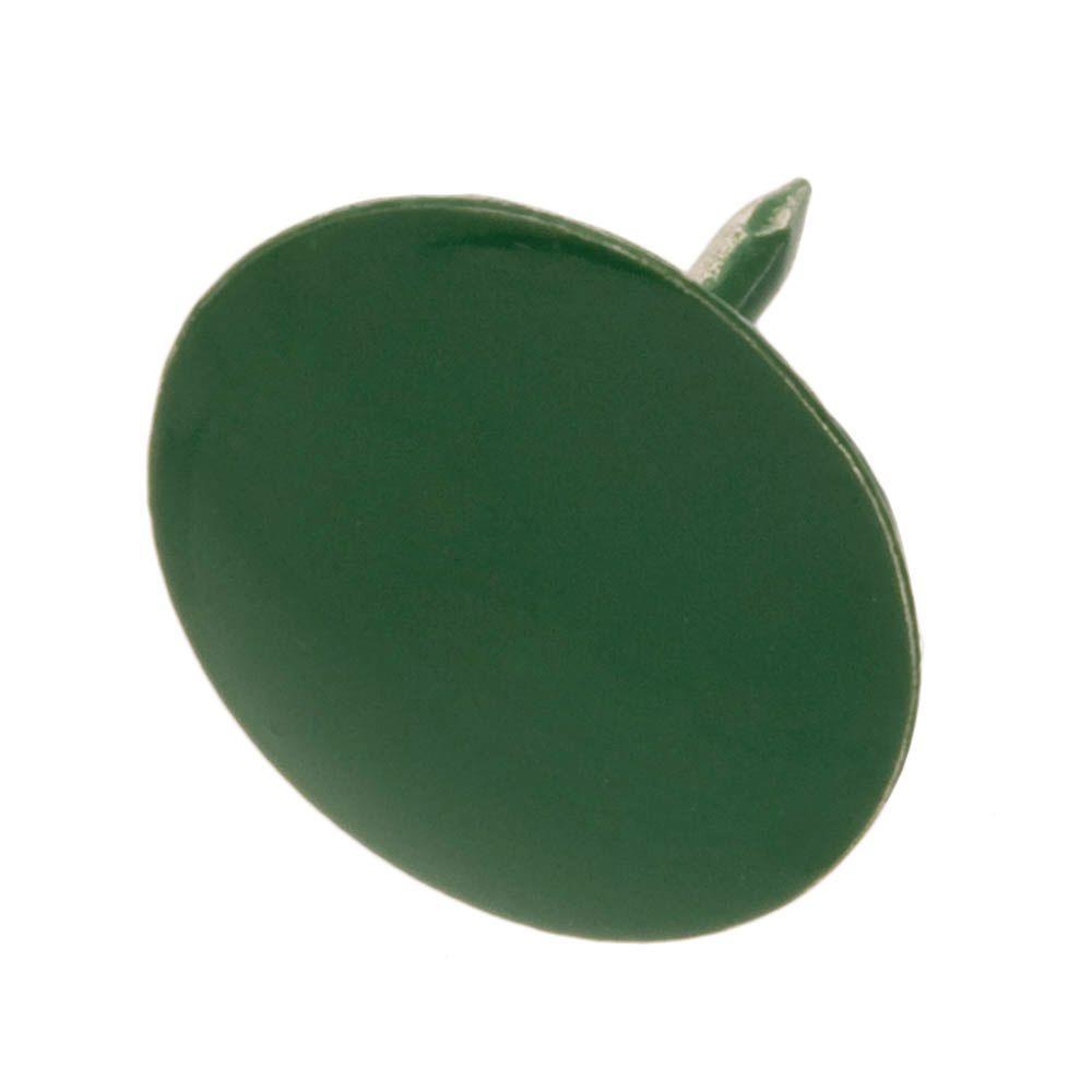 Steel Green Flat-Head Thumb Tack (60-Piece per Pack)