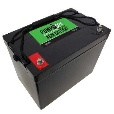 12-Volt 40 Ah Maintenance Free Deep Cycle AGM Battery