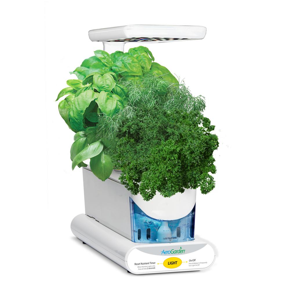 AEROGROWINTERNATIONAL AEROGROW INTERNATIONAL AeroGarden Sprout LED with Gourmet Herb Seed Pod Kit in White