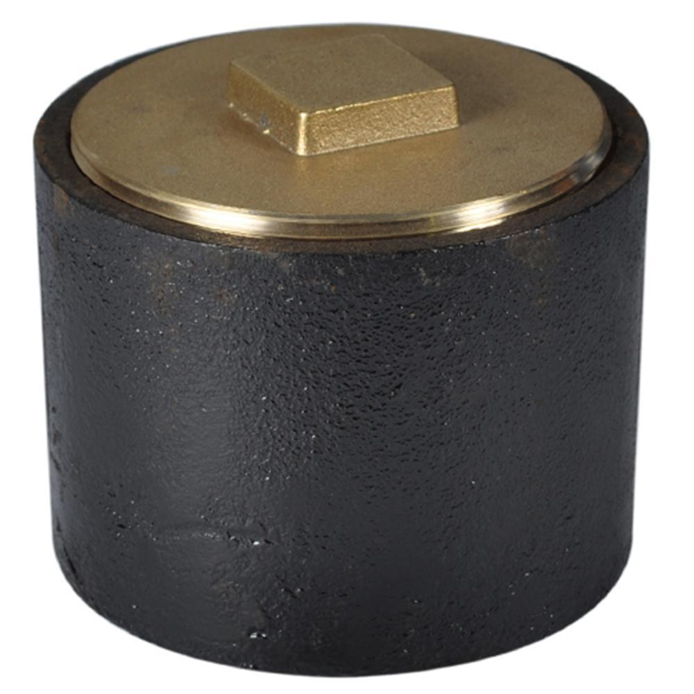 3 in. Cast Iron Ferrule with Brass Plug