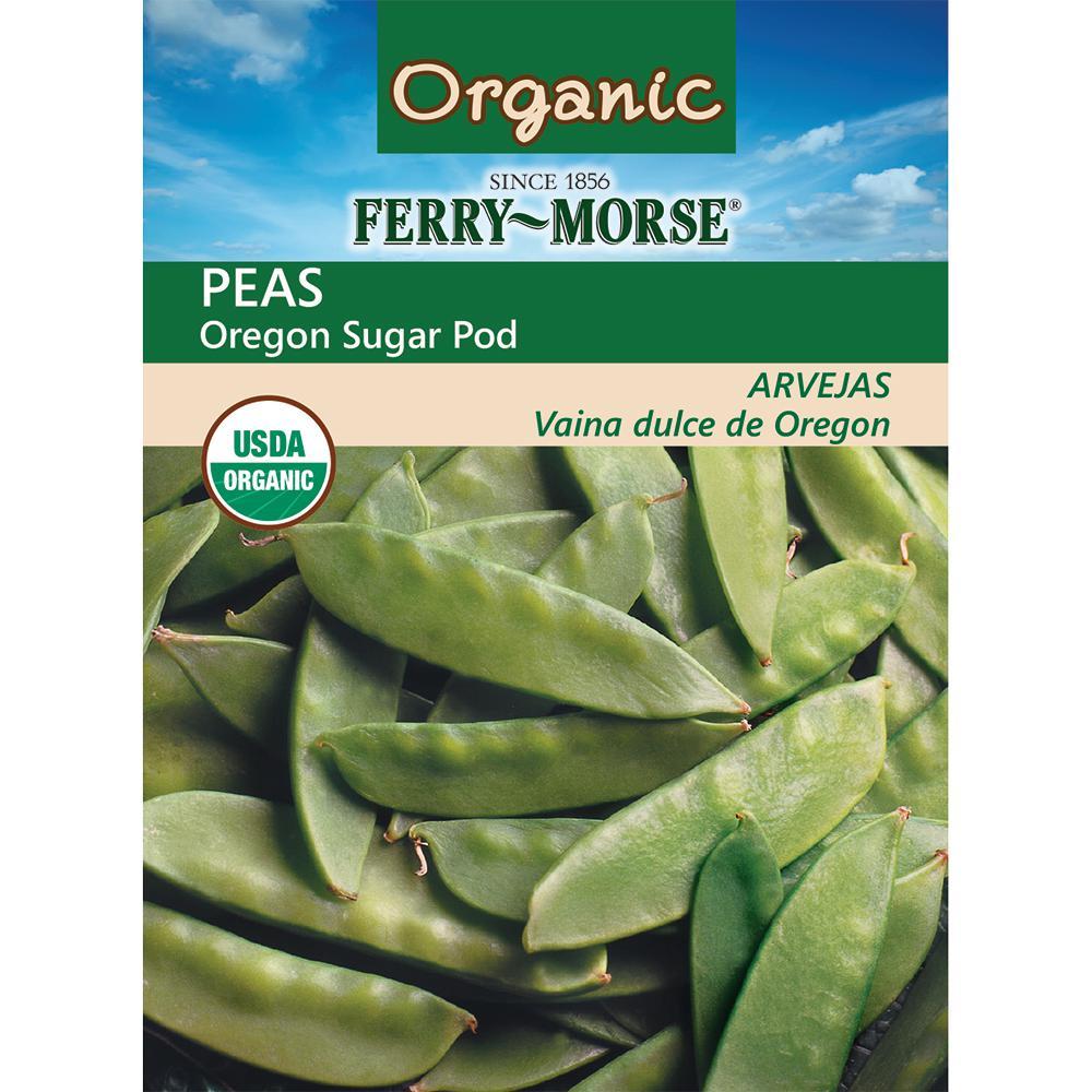 Pea Oregon Sugar Organic Seed