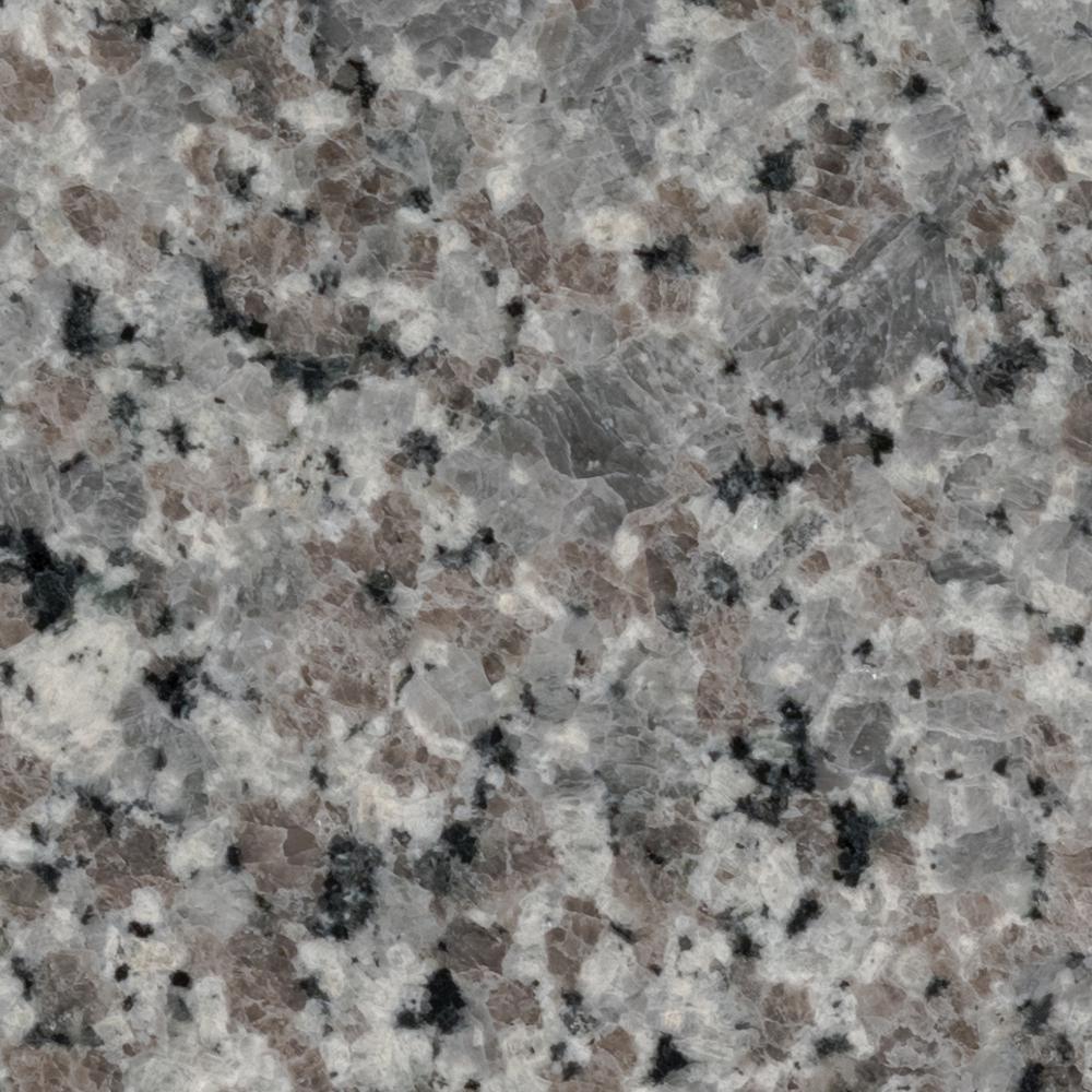 3 in. x 3 in. Granite Countertop Sample in Swan Gray