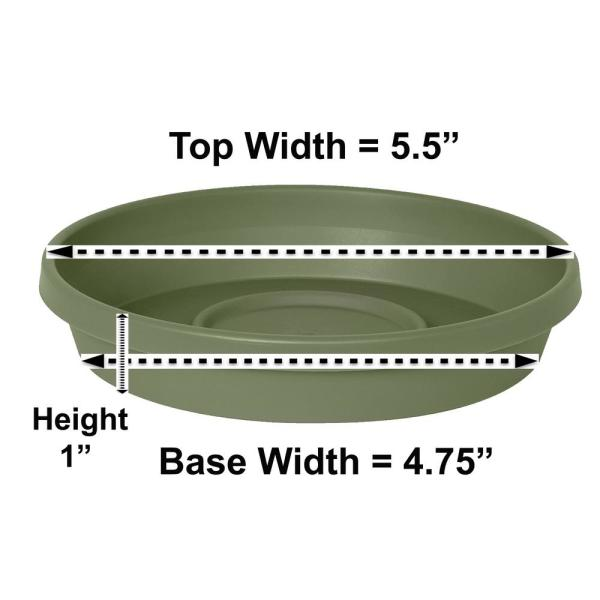 Terra 5.5 in. Living Green Plastic Plant Saucer Tray