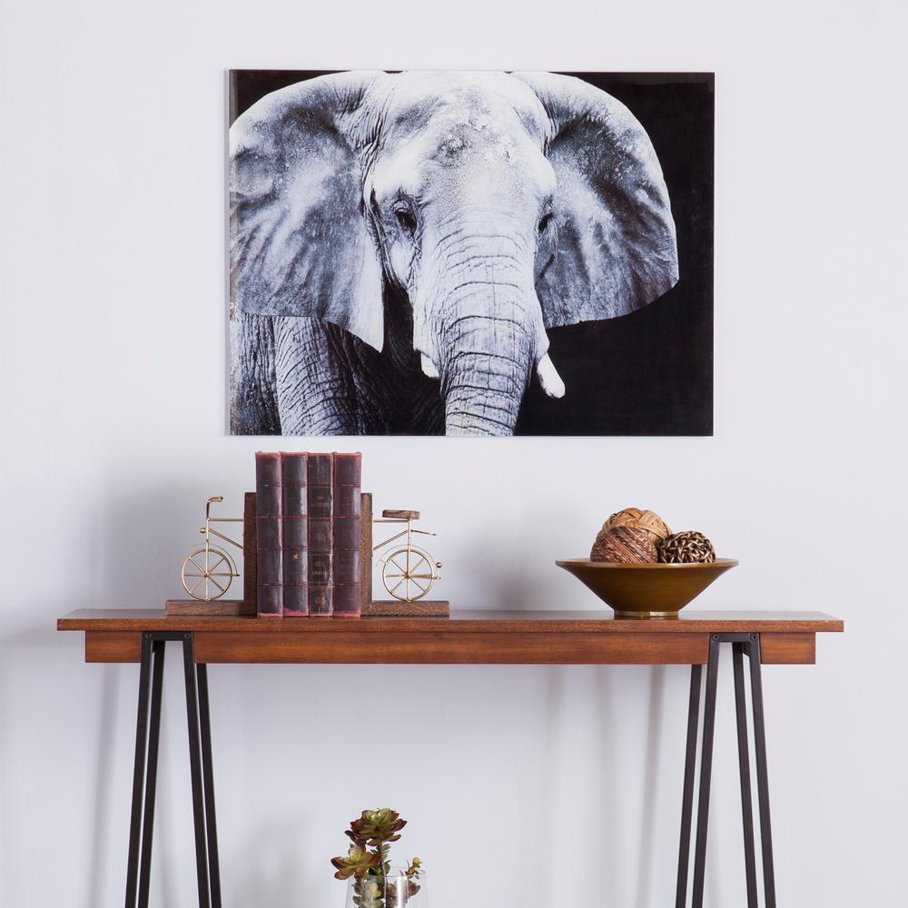 Southern Enterprises 24 H x 32 W The Elephant Glass Wall Art-HD94808 ...