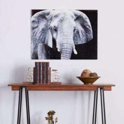 24 H x 32 W The Elephant Glass Wall Art