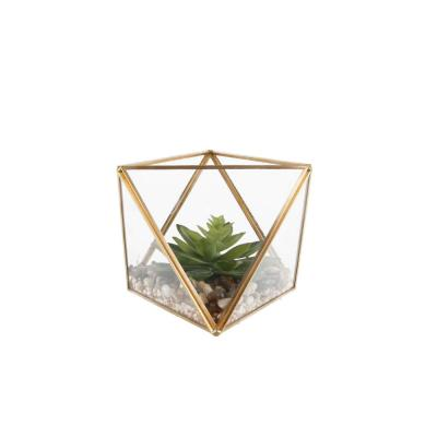 7 in. Glass Square Open Top Terrarium with Faux Succulents Garden, MD