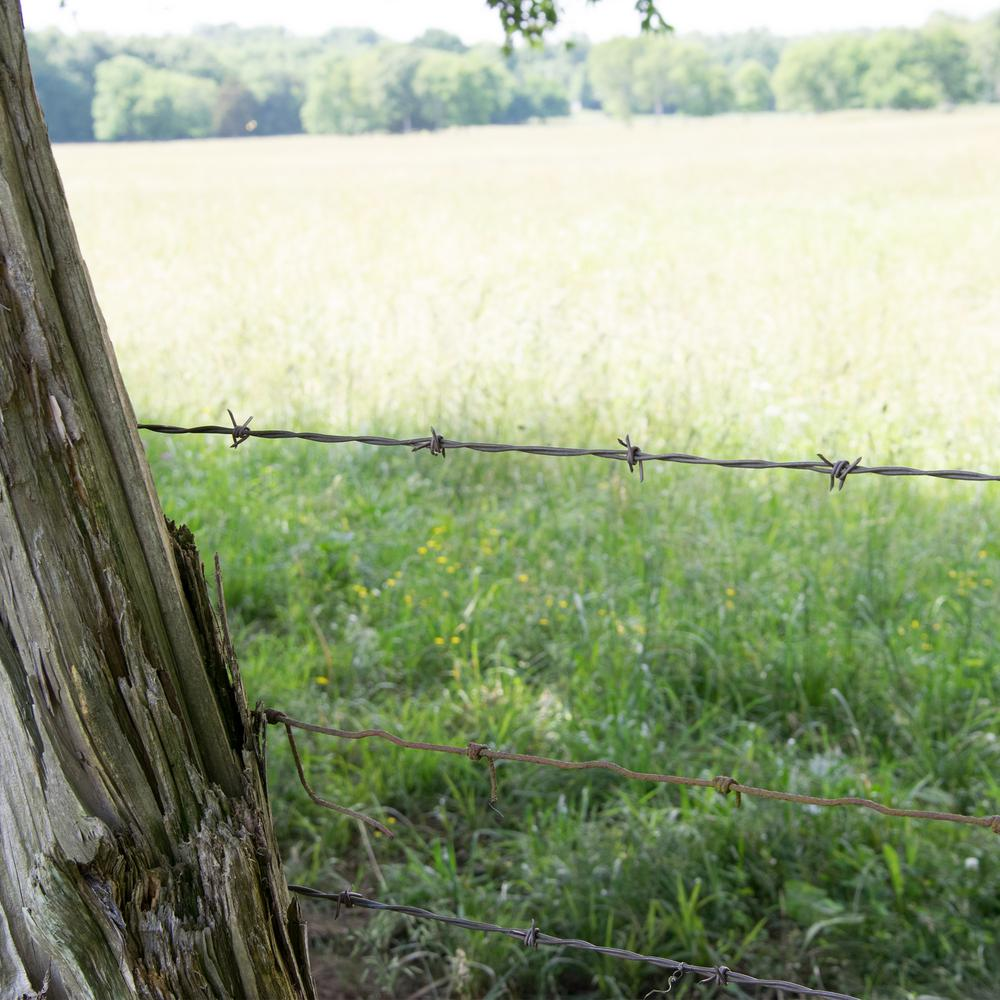 15-1//2-Gauge 4-Point High-Tensile FARMGARD Sharp Barbed Wire Fencing 1320 ft