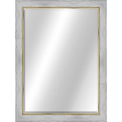 Transitional 22 x 28 Rustic White with Gold Framed Vanity Mirror