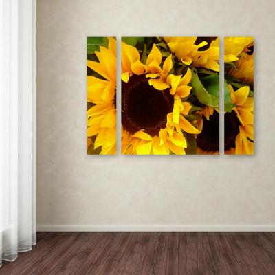 """30 in. x 41 in. """"Sunflowers"""" by Amy Vangsgard Printed Canvas Wall Art"""