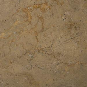 Ms International Sahara Gold 12 In X 12 In Polished