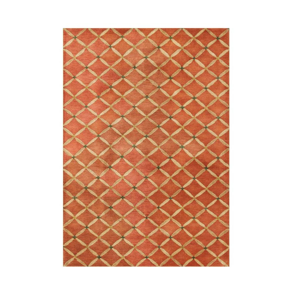 Orange Rust 5 Ft X 8 Ft Area Rug Ay271 5x8 The Home Depot