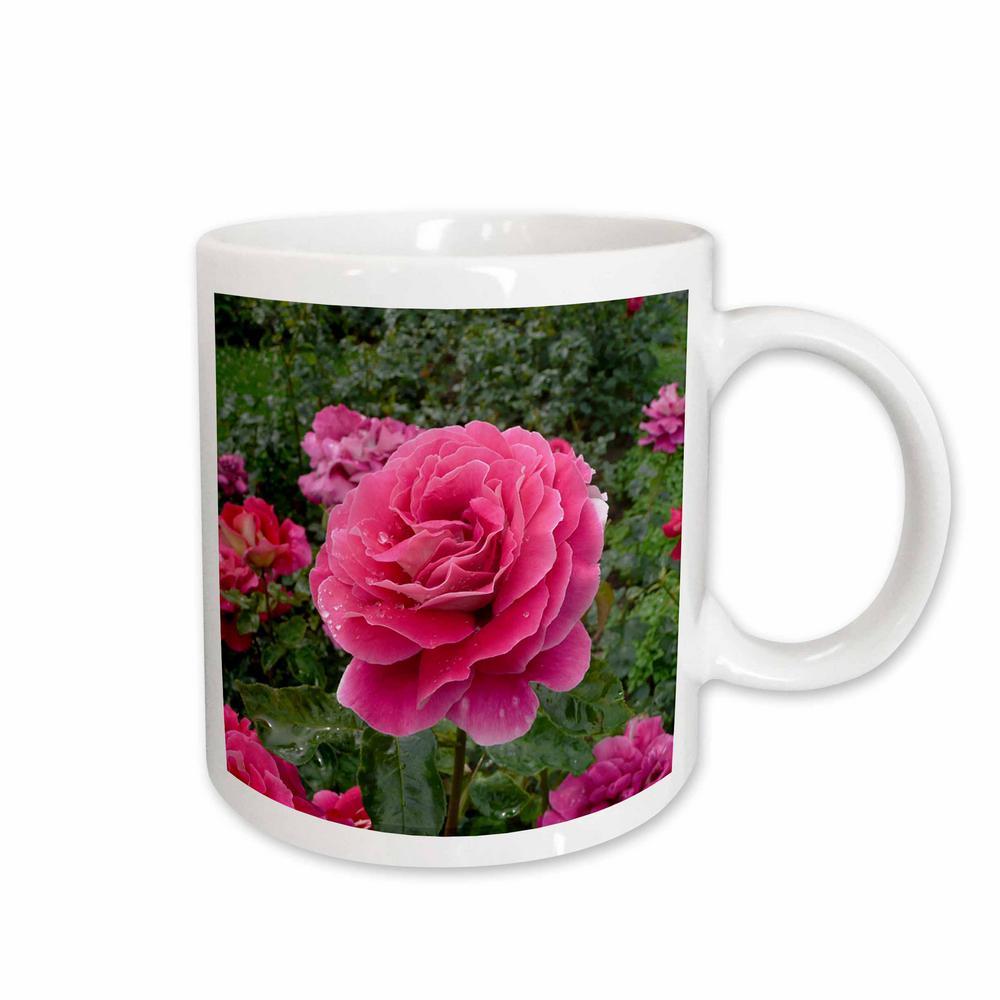 3drose flowers 11 oz white ceramic beautiful pink rose mug 3drose flowers 11 oz white ceramic beautiful pink rose mug mightylinksfo