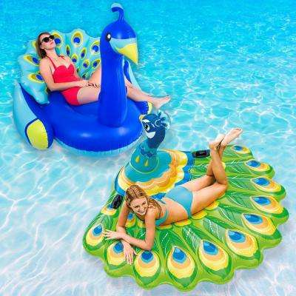 Peacock Swimming Pool Float Combo Pack