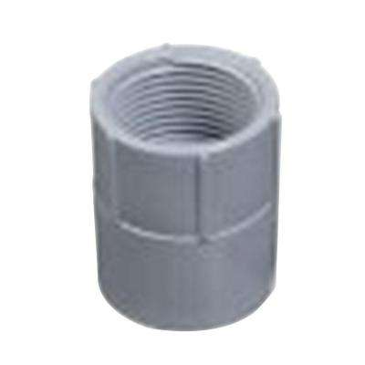2-1/2 in. PVC Female Adapter (Case of 4)