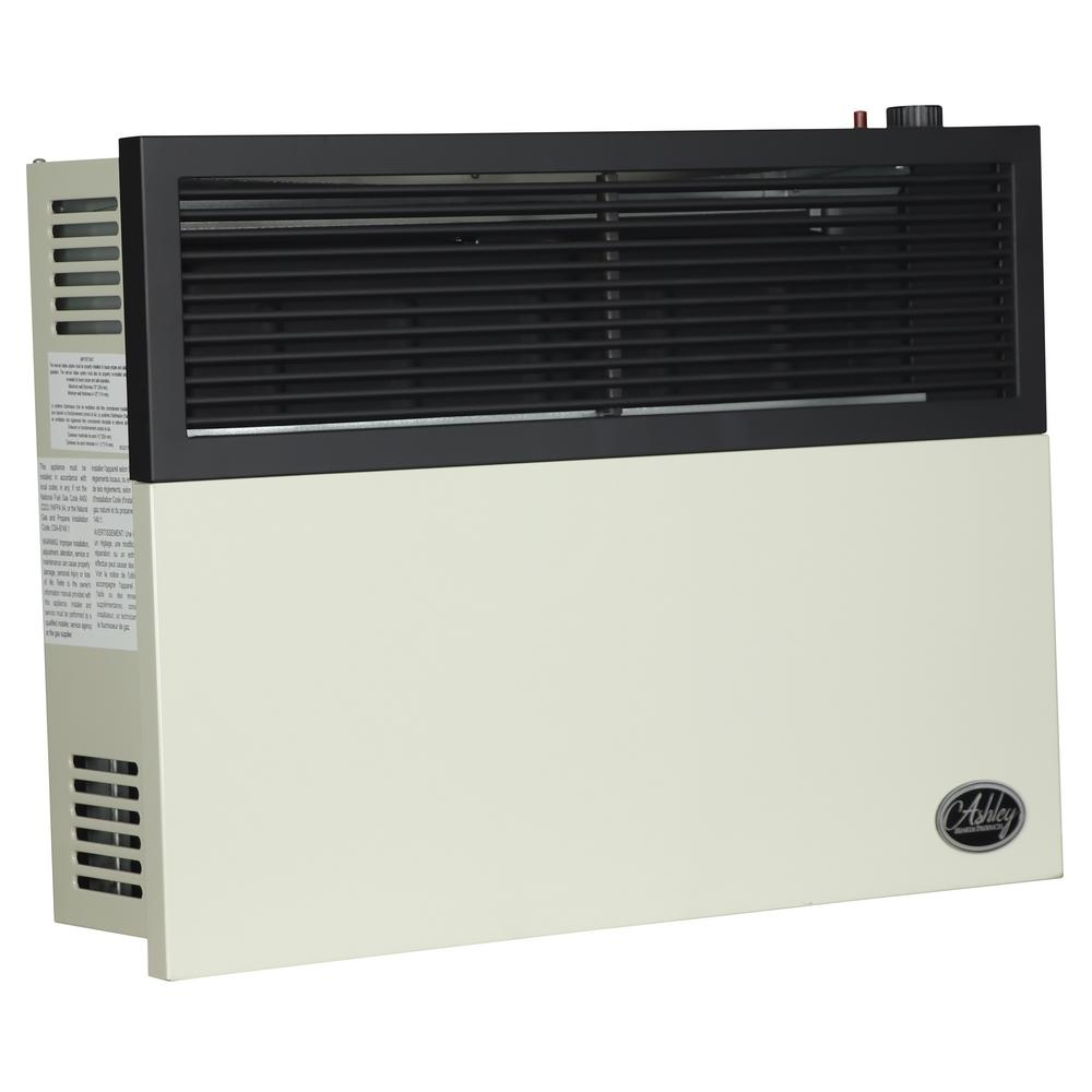 Ashley Hearth Products 17 000 Btu Direct Vent Natural Gas Heater Dvag17n The Home Depot