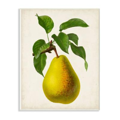 """10 in. x 15 in. """"Vintage Fruit Pear Painting"""" by Vision Studio Wood Wall Art"""