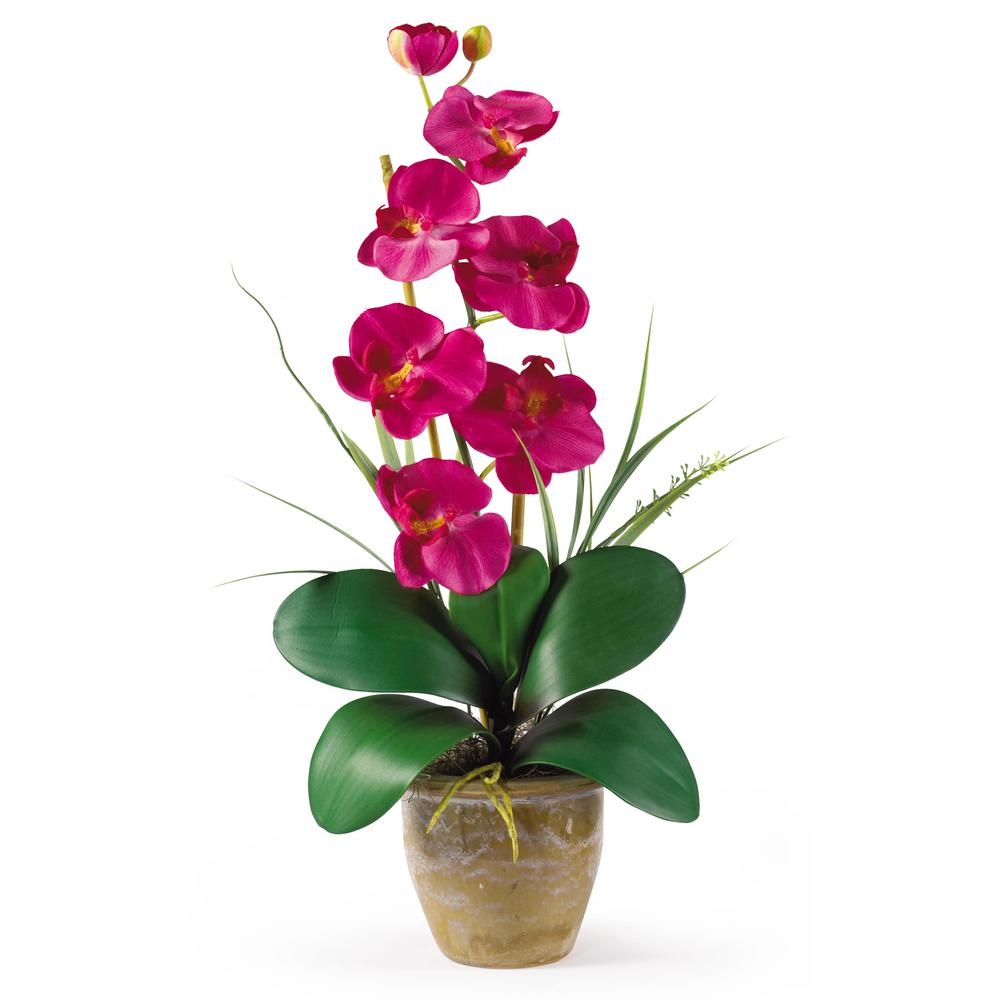 Nearly Natural 21 in. Phalaenopsis Silk Orchid Flower Arrangement in Beauty Nearly Natural 21 in. Phalaenopsis Silk Orchid Flower Arrangement in Beauty