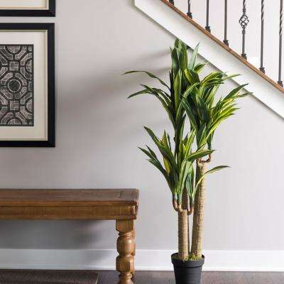 RT Dracaena Tree with Pot Green and Yellow