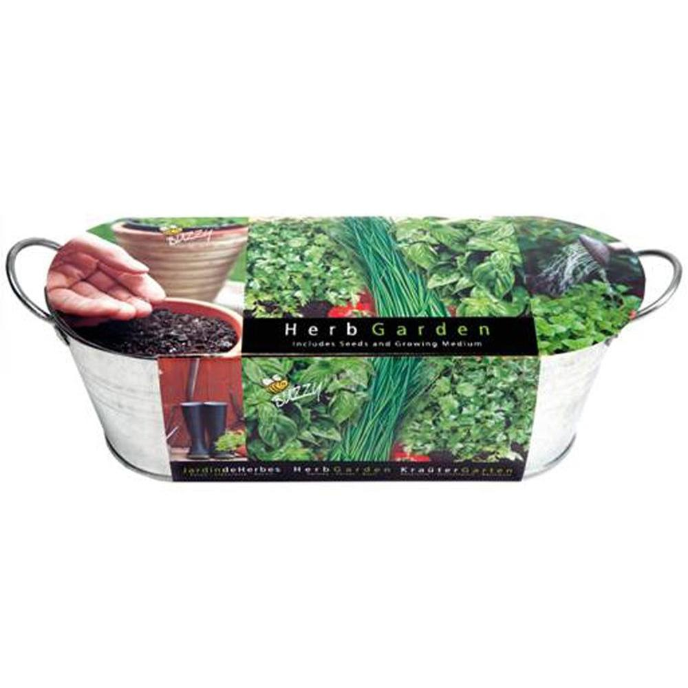 Perfect Buzzy Kitchen Herb Windowsill Grow Kit