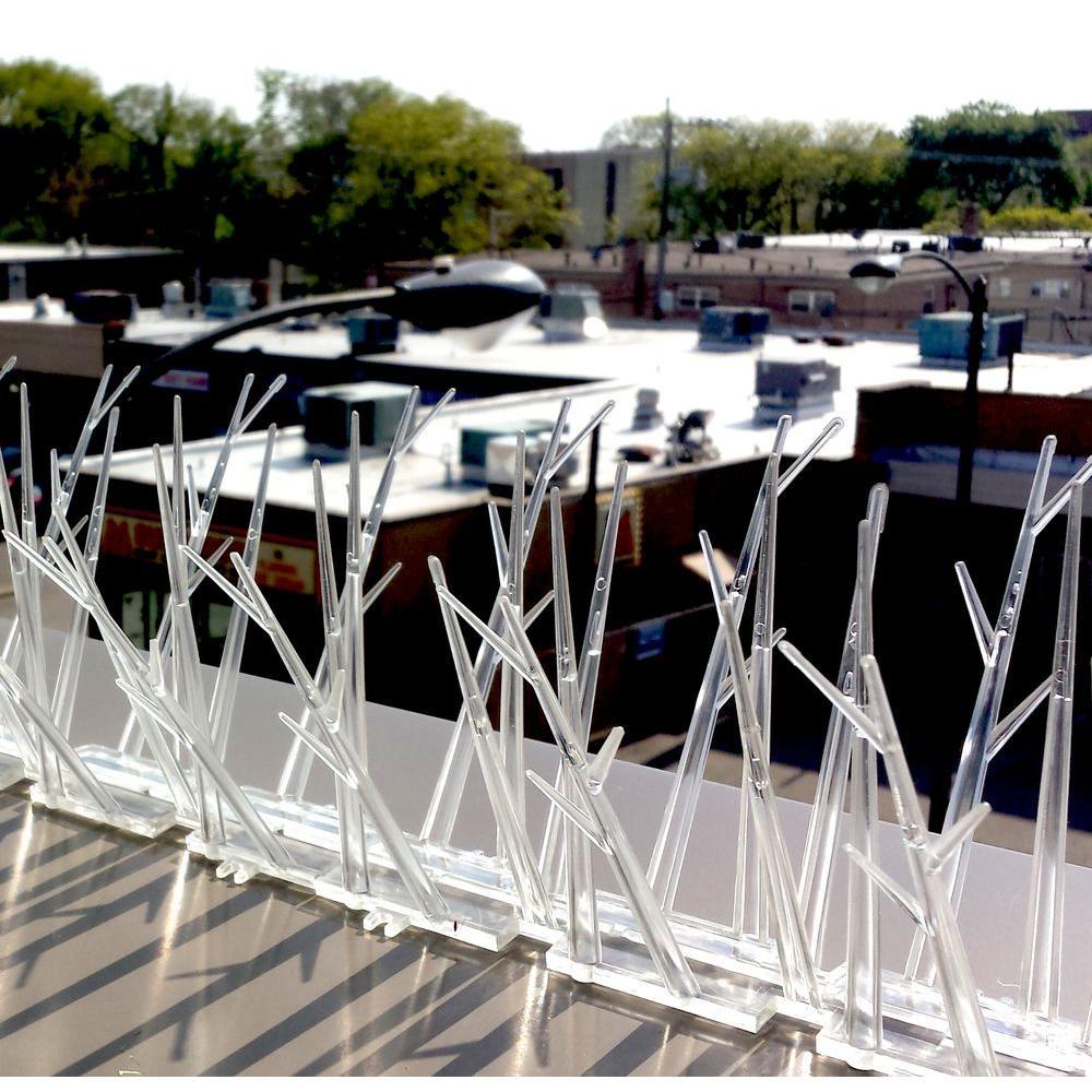 Bird-X 100 ft. Plastic Bird Spikes