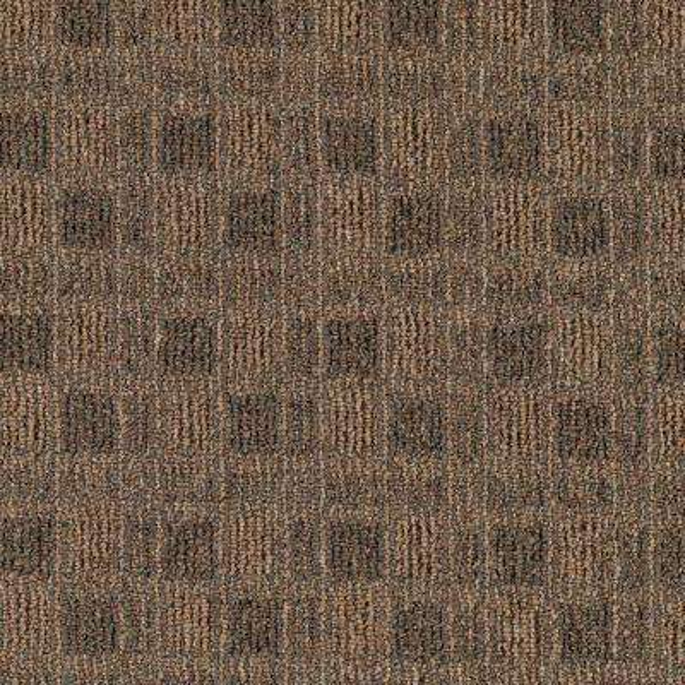 Carpet Sample - Cross Functional - Color Grass Skirt Loop 8 in. x 8 in.