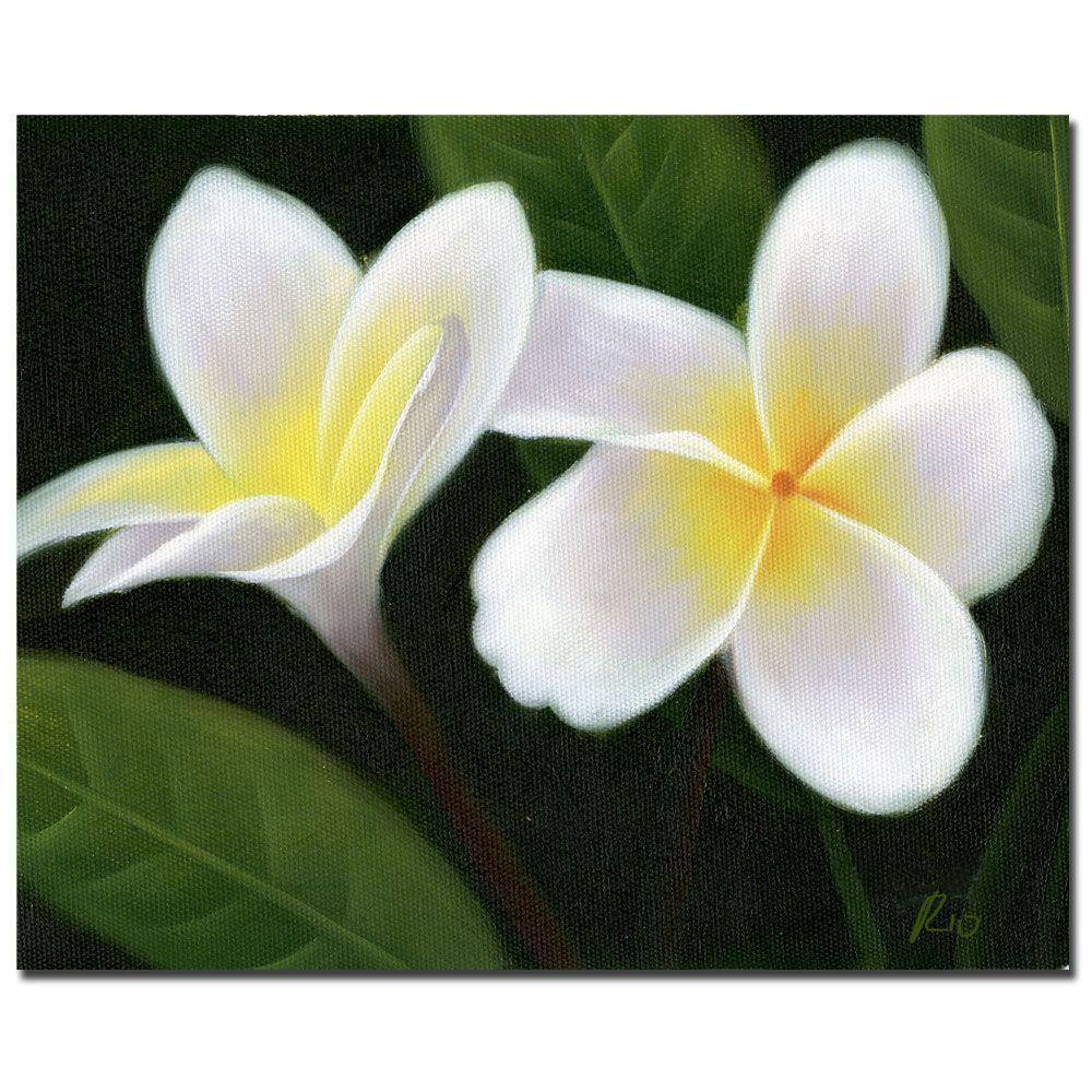 Trademark fine art 35 in x 47 in hawaiian lei flowers canvas art trademark fine art 35 in x 47 in hawaiian lei flowers canvas art izmirmasajfo Image collections
