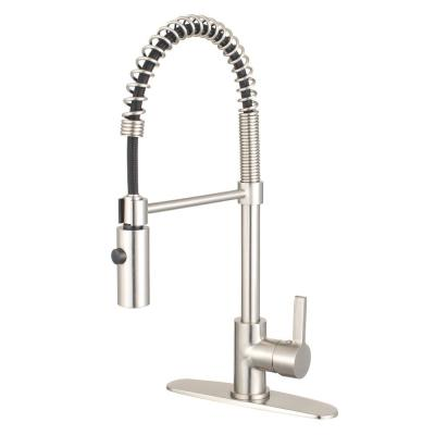 Continental Single-Handle Pull-Down Sprayer Kitchen Faucet in Brushed Nickel